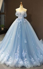 Tulle Floor-length Brush Train Ball Gown Sleeveless Adorable Evening Dress with Petals