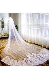 Romantic Tulle Long Wedding Veil with Lace Edge